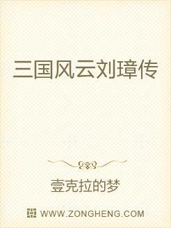 三国风云刘璋传
