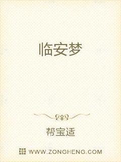 黑帽seo书籍