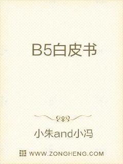 B5白皮书