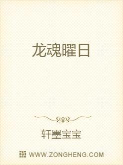 小说:龙魂曜日,作者:轩墨宝宝
