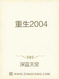 重生2004