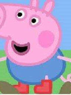 我不是猪八戒