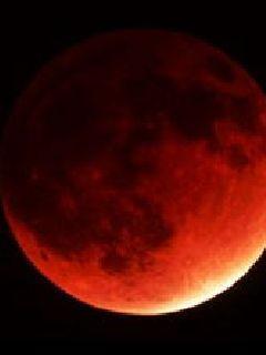 血月之月圆夜的秘密