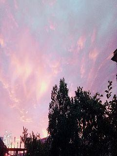 守望黎明与才彩虹