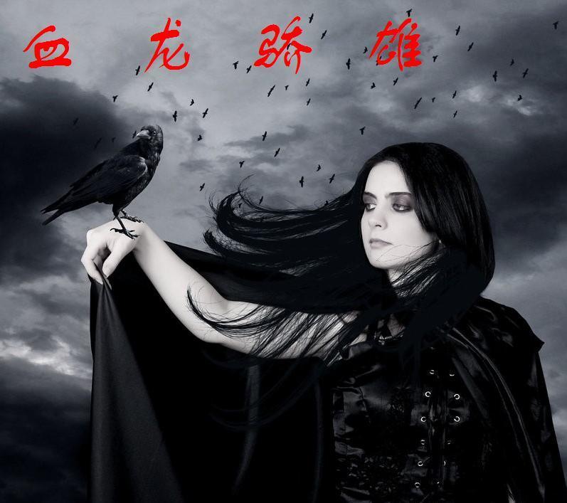 血龙骄雄 问镜 黑暗血时代 大荒蛮神