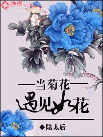 当菊花遇见如花