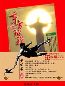 http://book.zongheng.com/book/390741.html