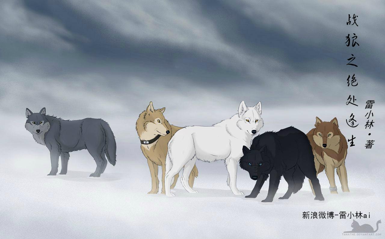 战狼2之绝处逢生