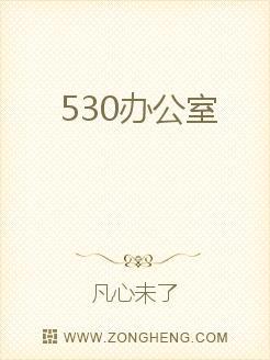 530办公室