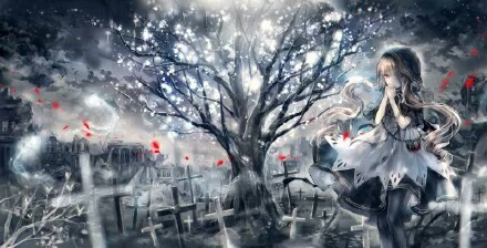诞星木之缘