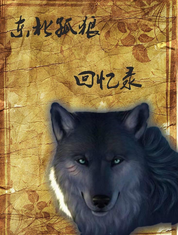东北孤狼回忆录