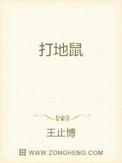 小说:打地鼠,作者:王止博
