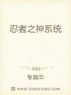 忍者之神系统