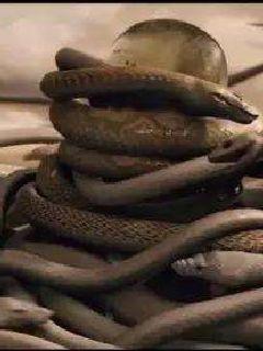 远东斩蛇英雄传说