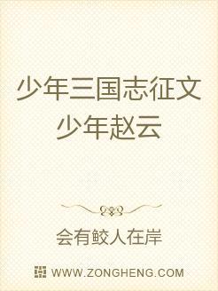 少年三国志征文少年赵云