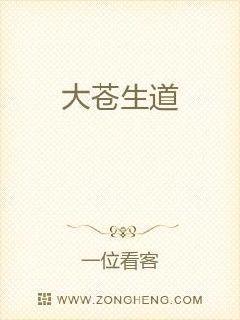 权路迷局:步步青云