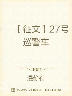 【征文】27号巡警车