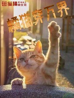 带着橘猫穿万界