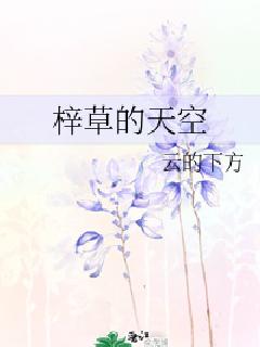 梓草的天空