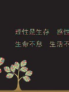 小说:荣耀股海,作者:孔丽晶