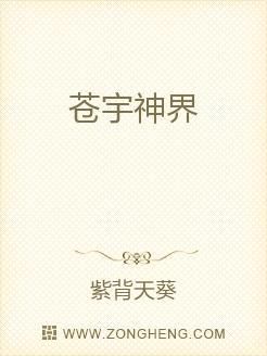 小说:苍宇神界,作者:紫背天葵