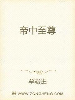 仁科百华bt