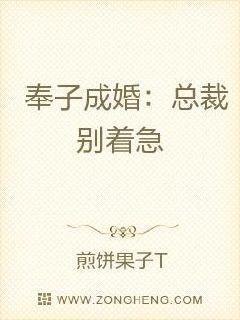 奉子成婚:总裁,别着急