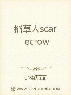 稻草人scarecrow