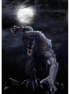 追溯记之狼人复世