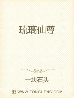 小说:琉璃仙尊,作者:一块石头