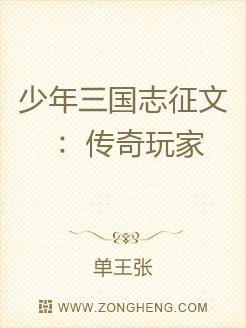 少年三國志徵文:傳奇玩家