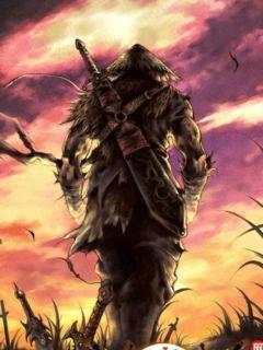 海贼王之剑客纵横