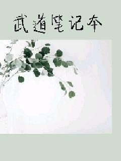 武道笔记本