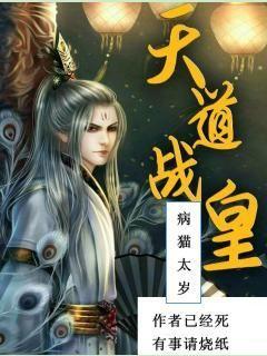 小说:天道战皇,作者:病猫太岁