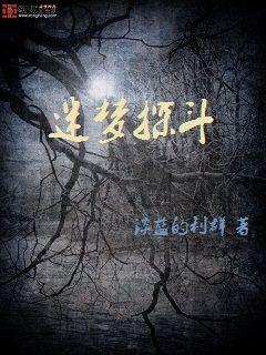 小说:迷梦探斗,作者:淡蓝的利群