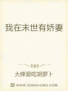 杨门十二寡妇艳史