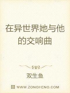 纵横四海小说