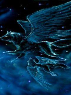 诸界之天狼传说