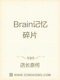 Brain记忆碎片