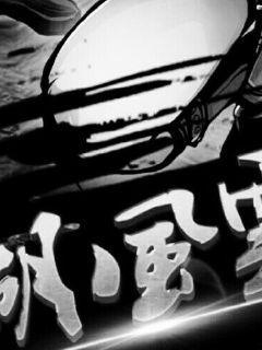 江湖风雨录