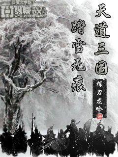 天道三國之踏雪無痕