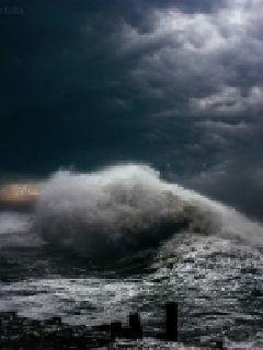 极海惊魂录