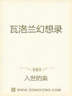 维和粽子公子系列