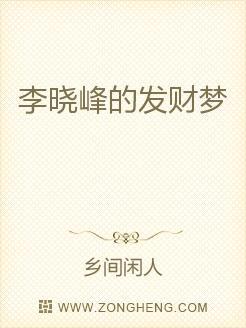 李晓峰的发财梦