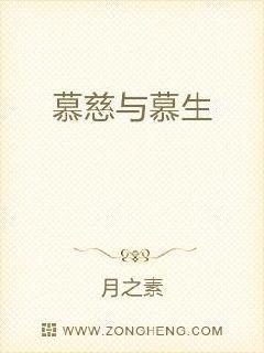 日本中文字幕在线视频二区