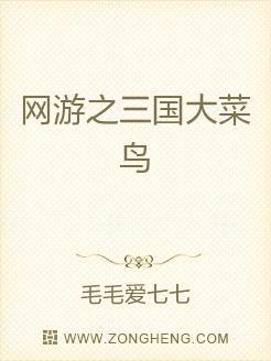 网游之三国大菜鸟