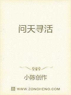 温州seo