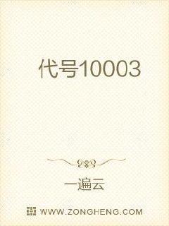 代号10003