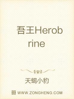 吾王Herobrine