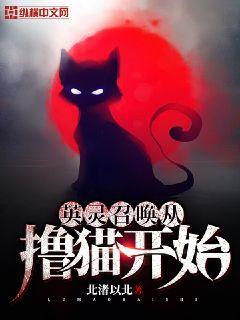 英靈召喚從擼貓開始